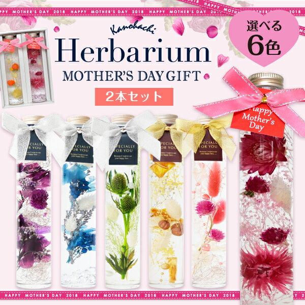【母の日ギフト】ハーバリウム 2本セット Herbarium 癒しのインテリア 選べる5カラー ブリザーブド フラワー ドライフラワー ギフト プレゼント 贈り物 誕生日 プレゼント 花 ブリザードフラワー プチギフト 内祝い