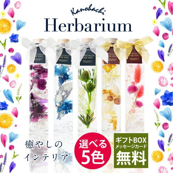 ハーバリウム1本 Herbarium 癒しのインテリア 選べる5カラー ブリザーブド フラワー ドライフラワー ギフト プレゼント 贈り物 誕生日 プレゼント 花 敬老の日