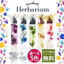 Herbarium main01