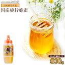 国産蜂蜜500g(とんがり容器)国産純粋はちみつ 国産はちみつ ※数量限定 おひとり様3本まで蜂蜜専門店かの蜂
