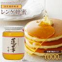国産 九州れんげ蜂蜜 1000g 1kg レンゲ蜂蜜 はちみつ ※おひとり様1本まで蜂蜜専門店 かの蜂