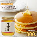 国産蜂蜜 九州レンゲ蜂蜜(はちみつ) 300g 蜂蜜専門店 かの蜂