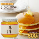 【国産】はちみつ 九州レンゲ蜂蜜(はちみつ) 600g 蜂蜜専門店 かの蜂