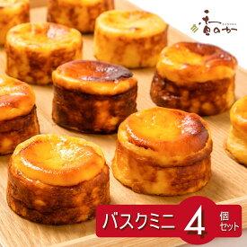 バスクチーズケーキ 小分け ミニ サイズ 4個 入り ギフト 誕生日 プレゼント 大人気 真っ黒 チーズケーキ 食べきり お取り寄せ スイーツ ハロウィン