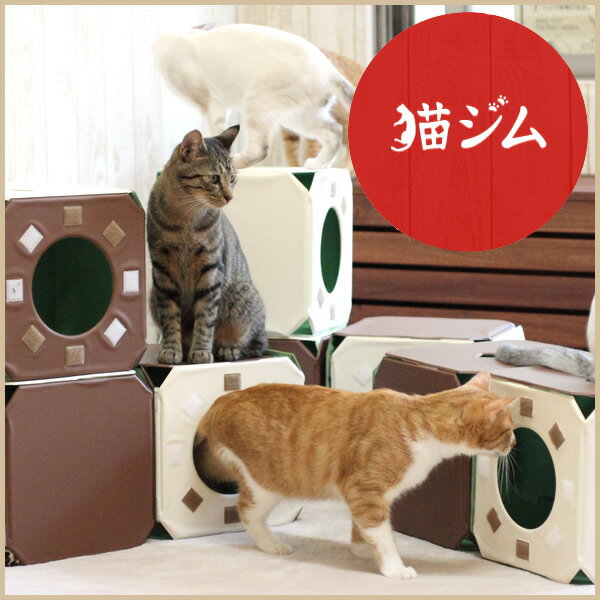 猫ジム 3BOX基本セット [キャットタワー 猫タワー キャットトンネル キャットハウス キューブ 据え置き おしゃれ ランド]