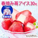 【送料無料】袋包装 苺アイスクリームセット(30粒入)
