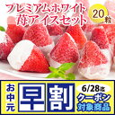 【送料無料】一粒一粒小箱に入った プレミアムホワイト苺アイスクリームセット (短冊のし) ギフト