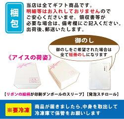フルーツアイスボールセット(45粒入)(短冊のし)