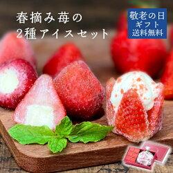 【送料無料】お花のようないちごアイス&苺アイス