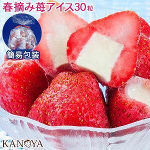 【16日1:59まで10%オフクーポン】 イチゴアイス アイスクリーム 福袋 詰め合わせ 袋包装 苺アイスクリームセット(30粒入)