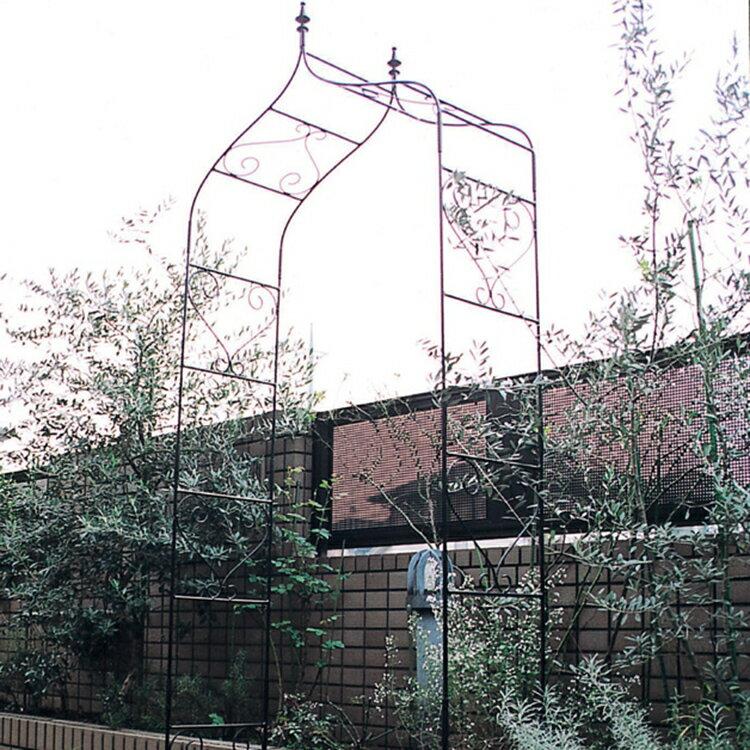ガーデンアーチ (ローズアーチ /バラアーチ/フラワーアーチ/パーゴラ) 庭 ガーデン アイアン製 タイプA 【送料無料】