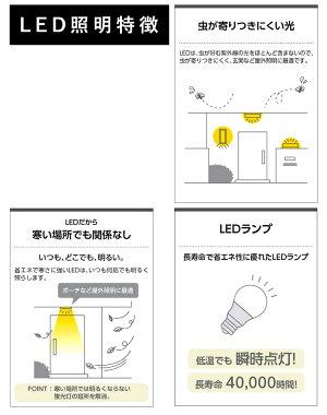 LED特徴