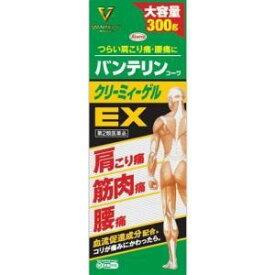 【第2類医薬品】バンテリンコーワクリーミィーゲルEX 300g(4987067245604)