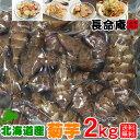 菊芋 2kg 国産(北海道産)糖質制限に (M〜Lサイズ)農薬不使用 化学肥料無使用 送料無料 キクイモ きくいも 天然のインシュリン「イヌリン」が豊富です