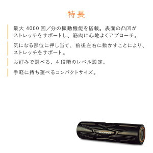 シックスパッドパワーローラーSSIXPADPowerRollerSSE-AA03SMTG正規品