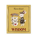 WISDOM 5p