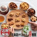 【送料無料】北海道かりんとう9種お楽しみセット お手ごろサイズ ※お一人様一回限り3個まで お菓子 和菓子 お取り…