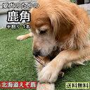 鹿の角 犬 おもちゃ 鹿角 長持ち 国産 北海道 長さ約15cm 半割 1本 天然 エゾ鹿角 おやつ グッズ 玩具 デンタルケア …