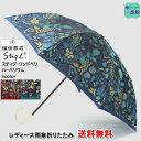 傘 レディース 雨傘 おしゃれ 折りたたみ 槙田 商店 スティグ・リンドベリ 【送料無料】『【HERBARIUM】ハーバリウム …