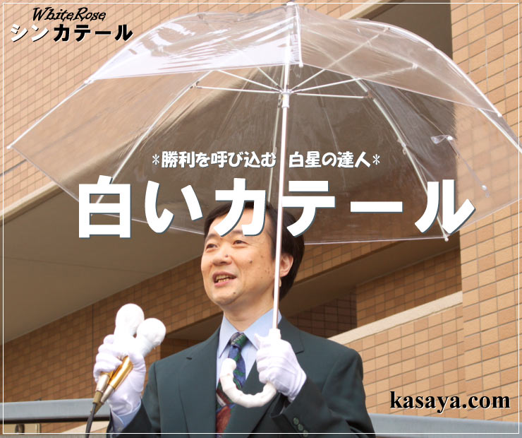 シンカテール【逆風に強い傘 勝てる雨傘】 【はじめての選挙】★ビギナーさん&草の根選挙応援企画勝てる雨傘シンカテールホワイトローズの傘
