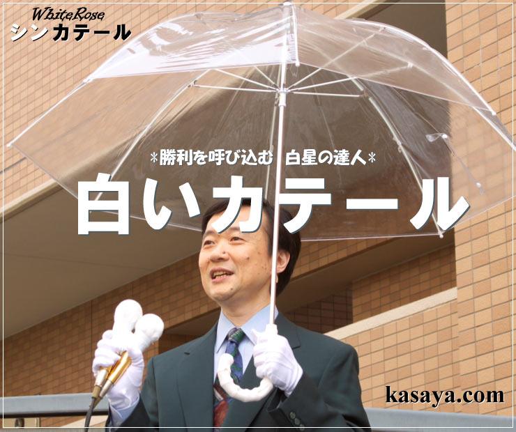 シンカテール【逆風に強い傘 勝てる雨傘】 【負けへんで】負けず嫌いさん応援企画勝てる雨傘シンカテールホワイトローズの傘