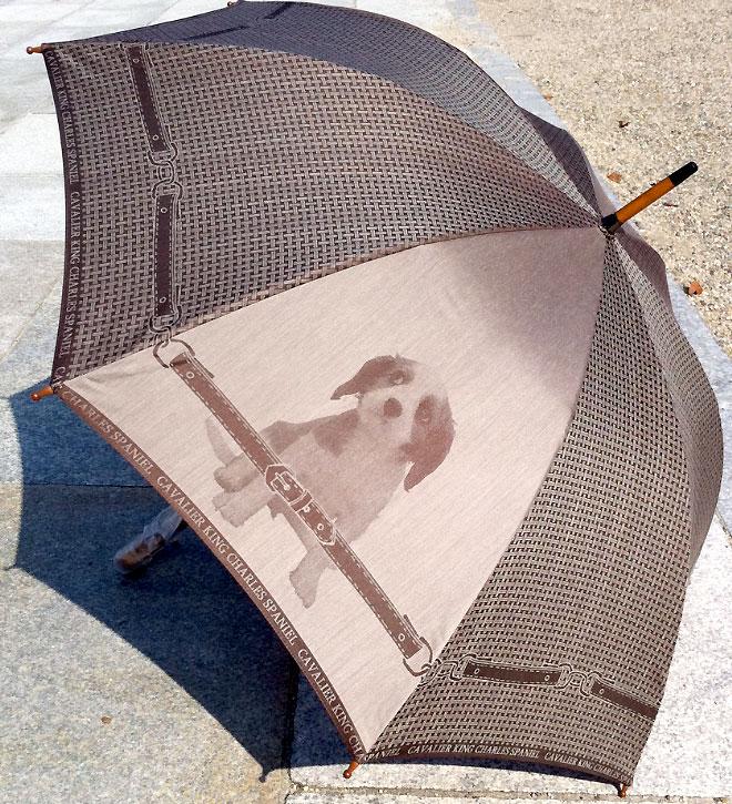 【お名前入れなし】槙田商店 犬の傘 cucciolo(クチロ)CAVALIER KING CHARLES SPANIEL(キャバリエキングチャールズスパニエル)【楽ギフ_包装選択】【楽ギフ_のし】【楽ギフ_のし宛書】