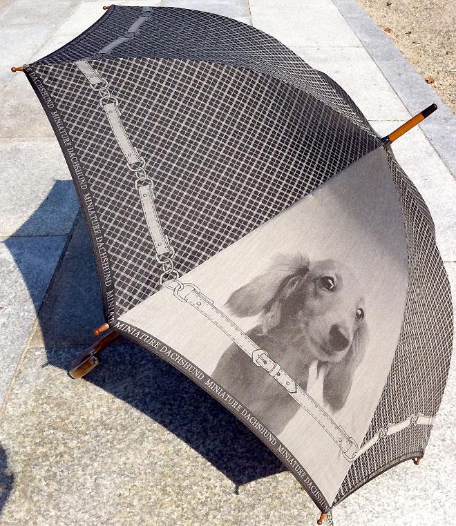 【お名前入れなし】槙田商店 犬の傘 cucciolo(クチロ)MINIATURE DACHSHUND(ミニチュアダックス)【楽ギフ_包装選択】【楽ギフ_のし】【楽ギフ_のし宛書】