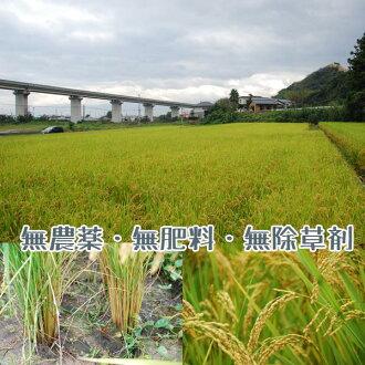 新米『爽羅』SOLA(玄米)愛媛産平成27年度米プレミア自然栽培・天日干米