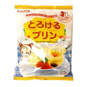 【コンパクト便】伊那食品 かんてんぱぱ とろけるプリン 525g(常温) 送料無料