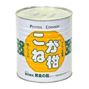 金柑缶詰 こがね柑 種抜き 丸M 1号缶 3300g【常温】