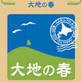 パン用強力粉 北海道産小麦 春よ恋100% 大地の春 2.5kg 【常温】【小分け】