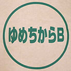 北海道産 パン用超強力粉 ゆめちから 100% 2.5kg【常温】【小分け】