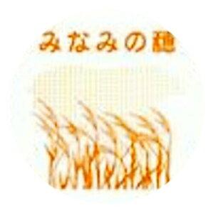 太陽製粉 福岡県産 パン用強力粉 みなみの穂 2.5kg 【常温】【小分け】