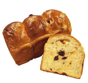 【お取り寄せ商品】ISM (イズム) 冷凍パン生地 レーズン 35g×140入 【冷凍】