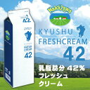 【お取り寄せ商品】中沢乳業 九州フレッシュクリーム 42% 1000ml
