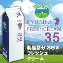 中沢乳業 九州産 フレッシュクリーム 35% 1000ml