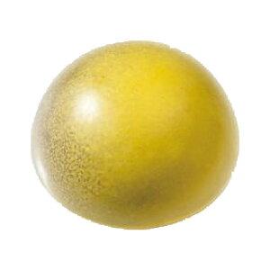 業務用ボンボンチョコレート カシャロ ユズ(柚子) 20個(冷凍)