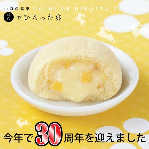 月でひろった卵 4個入 お土産 和菓子 山口 つきたま 果子乃季 tukitama