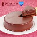 ザッハトルテ 【魅惑のザッハトルテ】 ギフト 子供 お菓子 チョコ かわいい おしゃれ ケーキ スイーツ チョコレート プレゼント