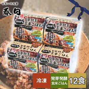 酵素 玄米 発芽