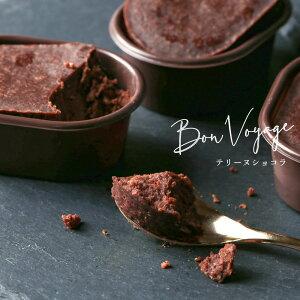 バレンタイン 2021 チョコ 個包装 テリーヌショコラ 生チョコチョコレート ケーキ ギフト プレゼント 内祝いお返し お礼 お祝 ご挨拶 手土産 結婚祝い 出産祝い 退職祝 かわいい お取り寄せ