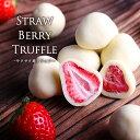 お中元 ギフト いちごトリュフ いちご チョコ イチゴチョコレートホワイトチョコ ホワイトチョコレート 苺 フルーツ …