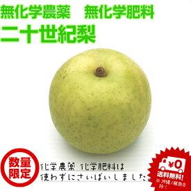 【無化学農薬・無化学肥料栽培】二十世紀梨 わけあり、ご自宅用!(サイズ無選別5〜6個)