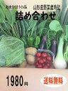 おまかせ10品山形産野菜詰め合わせ 野菜セット 旬野菜 新鮮野菜 国産野菜 ご当地野菜 野菜詰め合わせ 詰め合わせ 詰め…