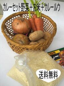 カレー野菜山形産 お米(つや姫山形県産)カレールウのセット ジャガイモ 玉ねぎ 人参 つや姫 業務用カレールウ200g 10皿分 カレー 材料 食材 セット カレールー つやひめ 山形 ご当地 野菜