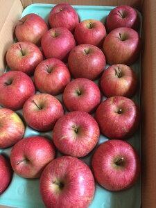 山形産りんご ふじりんご 健康くだもの 約5キロ(20玉~25玉)小傷色むらあり 中粒、小粒自家用 ギフト Apple  おいしい 送料無料