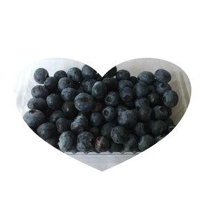 【生食】 ブルーベリー 国産 加工OK ジャム ジュース スムージーやジュース 冷凍可能300g入り 常温にての発送