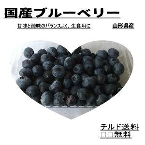 【生食ブルーベリー】甘味と酸味のバランスよし 生食 国産ブルーベリー ノーザンハイブッシュ系、果物 くだもの 国産フルーツ 冷凍可能 500g 送料無料