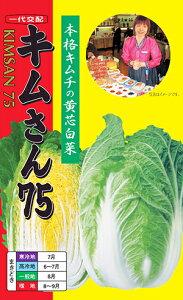 キムさん75種子:20ml