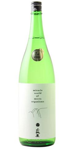 ☆【日本酒】山城屋(やましろや)純米大吟醸 1st-Class 1800ml